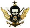 Special Operacions qualification badge