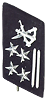 Naval Infantry collar badge
